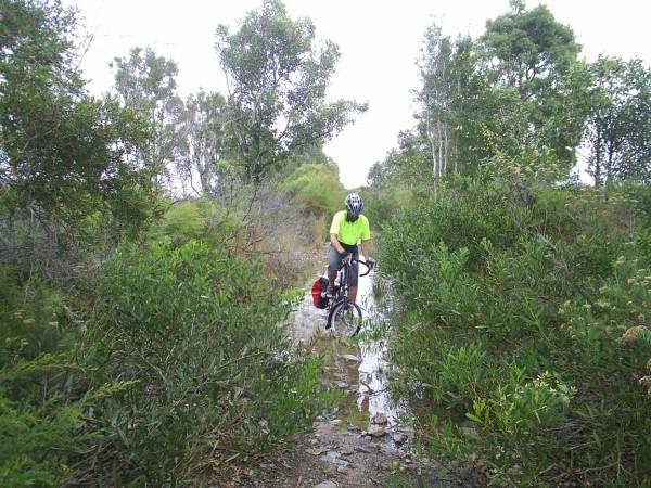 Mungo Brush to Seal Rocks Road